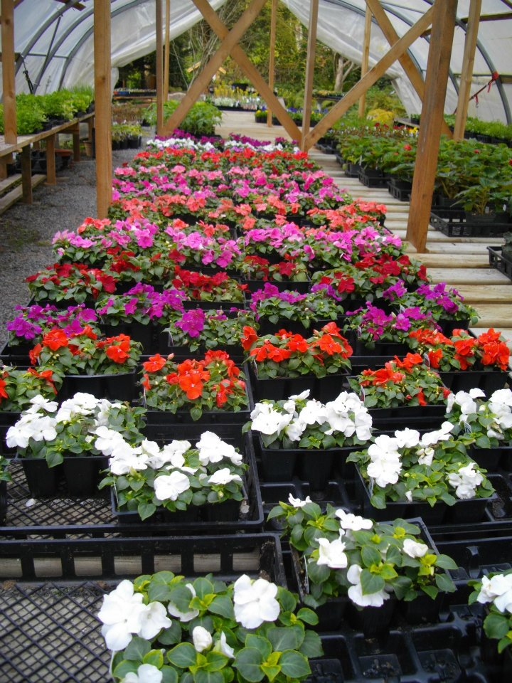 May 6 At the Nursery
